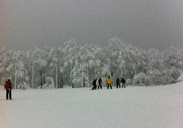 Skien in Yamagata (Zao)