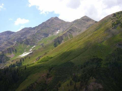 Bergjes