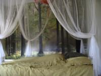 Slapen in het bos :)