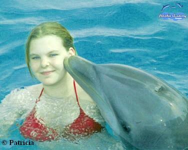 Curacao & dolfijn --> maart 2004