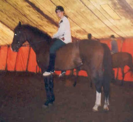 nog meer paard :)