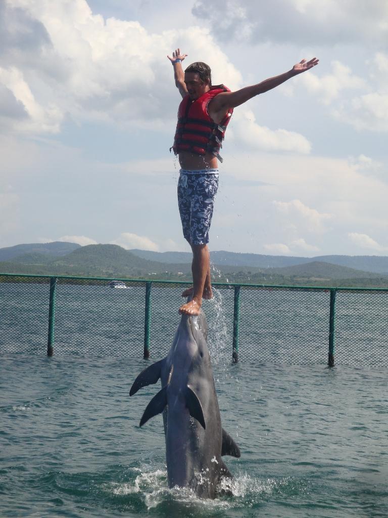 Zelfs dolfijnen vinden me geweldig