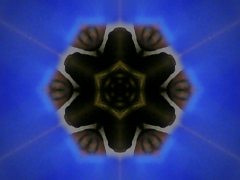 bloemb