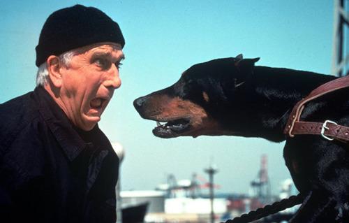 Ik hou van honden, honden niet van mij