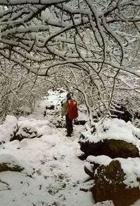 Nepal, sneeuw