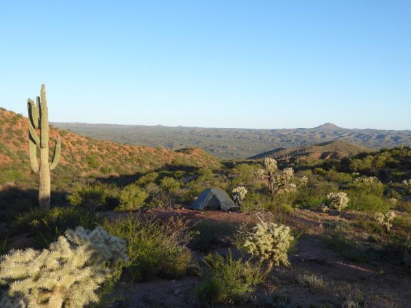 Kamperen in de Sonora Desert, Arizona, USA