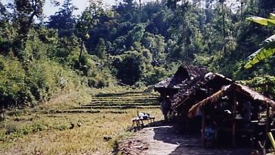 Thailand 2002/2003