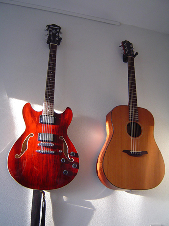 Ibanez AS73 TCR & Furch DM-40
